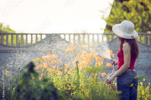 Fotografie, Obraz  Watering  with a hose,  gardening concept