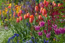 Springtime Garden In Giverny France Has An Abundance Of Beautiful Flowers