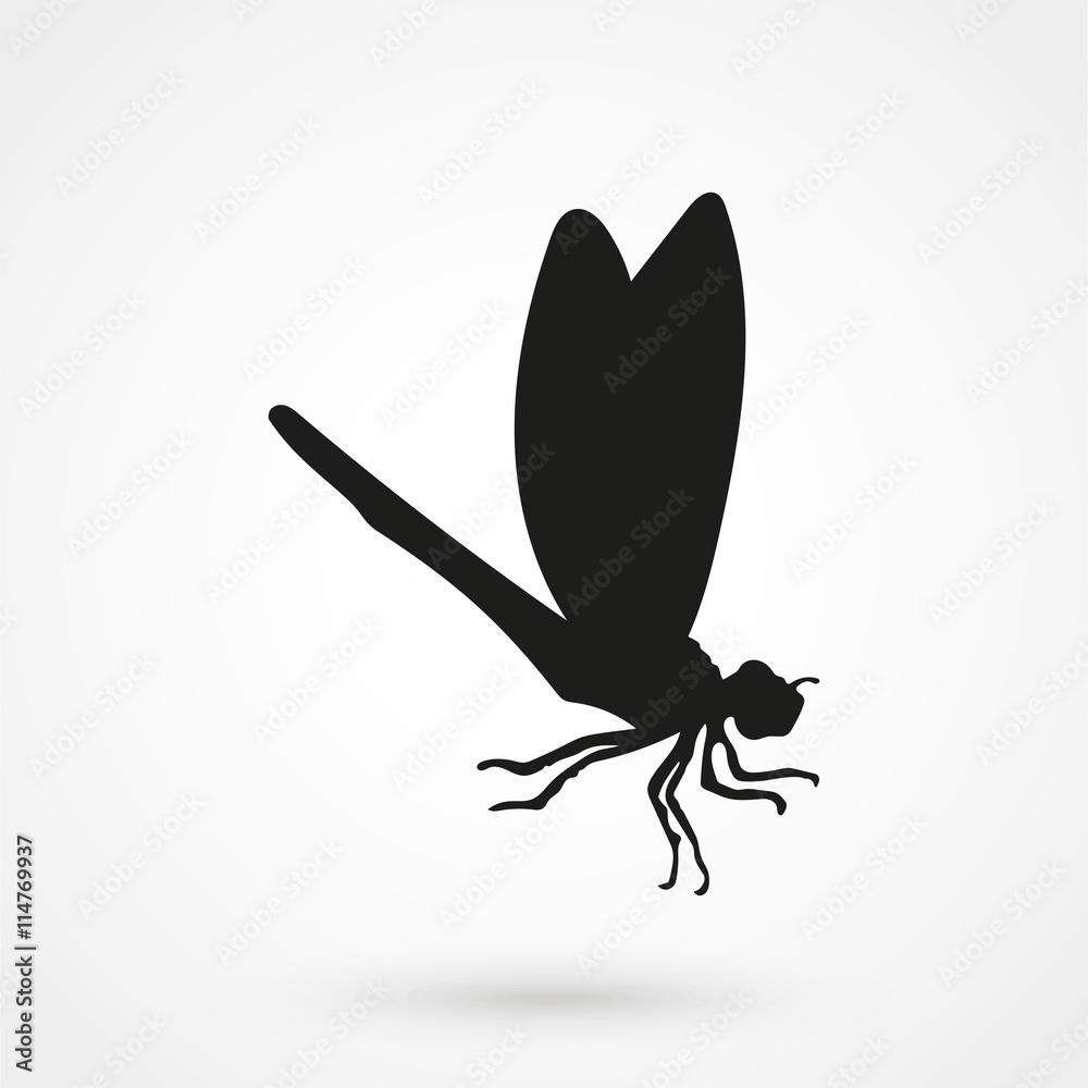 Valokuva  dragonfly icon