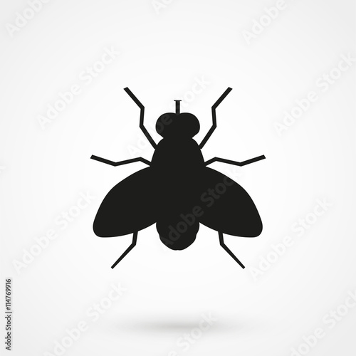 Fly vector icon Canvas-taulu