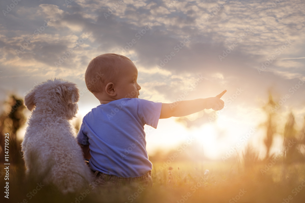Fototapety, obrazy: Little boy and his puppy