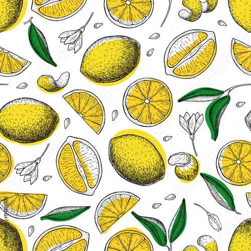 cytryna-wektor-wzor-rysowanie-cytryny
