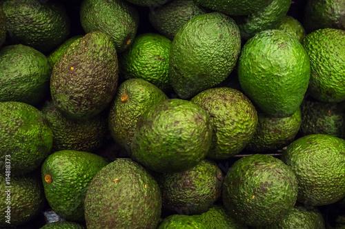 Fotografie, Obraz  Organic Avocados Produce