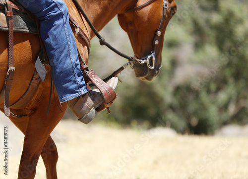 A cowboy boot in a stirrup riding a horse. Canvas Print