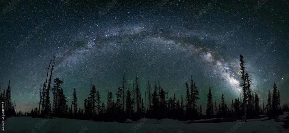 Fototapety, obrazy: Milkyway arch, pine forest, Utah