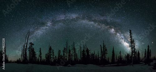 Valokuva  Milkyway arch, pine forest, Utah