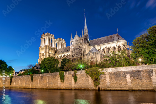 Fotografia  Notre-Dame and the River Seine in Paris at night