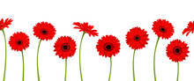Vector Horizontal Seamless Background With Red Gerbera Flowers.