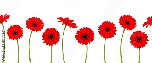 Fototapeta  Vector horizontal seamless background with red gerbera flowers.