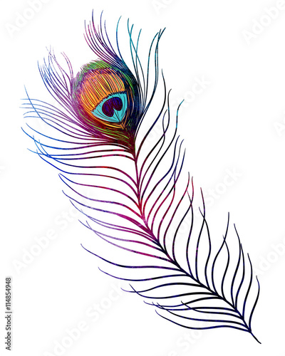 ef852c85a Peacock feather. Watercolor textured illustration on white background.  Tattoo