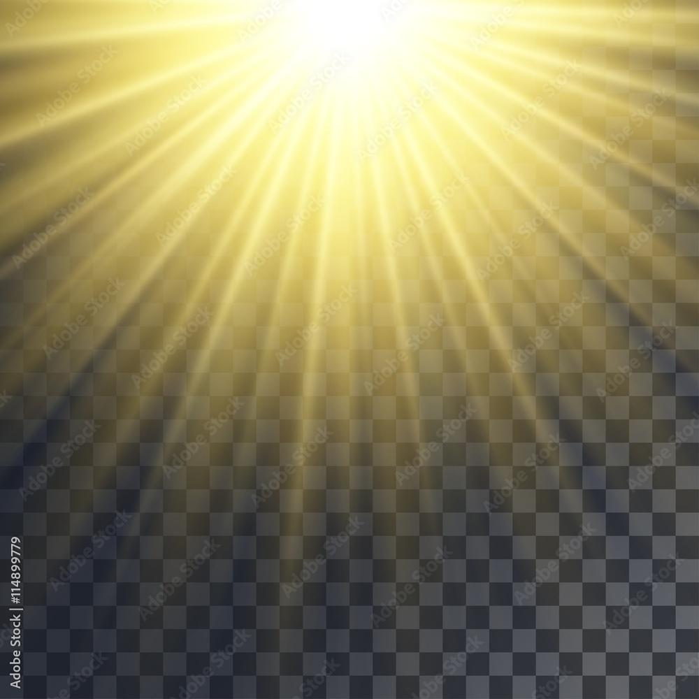 Fototapety, obrazy: Sun rays effect