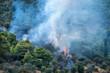 Waldbrand; Feuer; Forest Fire; 16084.jpg