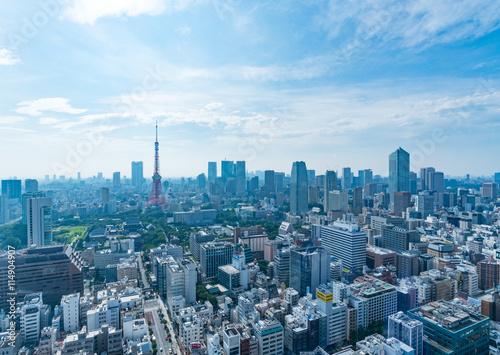 Foto op Canvas Pool 東京の風景