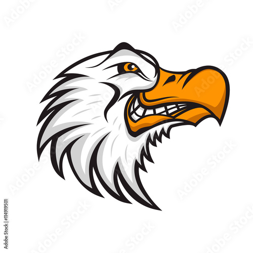 Fotografie, Tablou  Head of angry Seagull isolated on white background. Sport team o