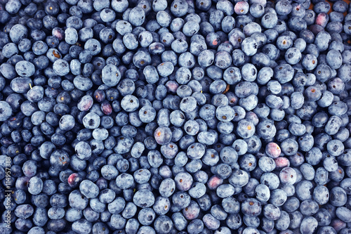 Foto  blueberry background