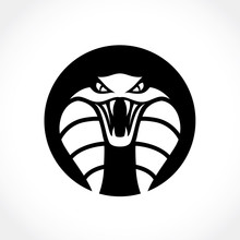 Snake Logo,Viper,Venom,cobra,Outdoor Brand Identity.
