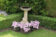 A Stone Bird Bath In A Beautiful Garden Setting.