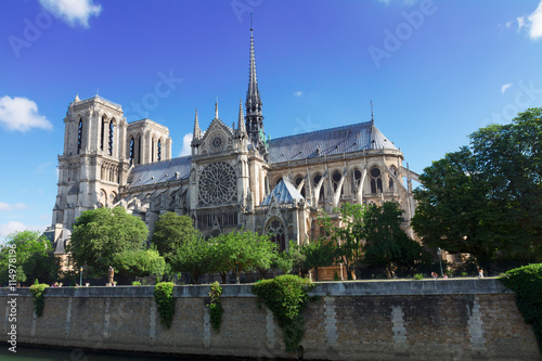 Notre Dame cathedral, Paris France Fototapeta