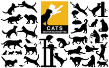 Cats And Kittens Vector Silhouettes Collection