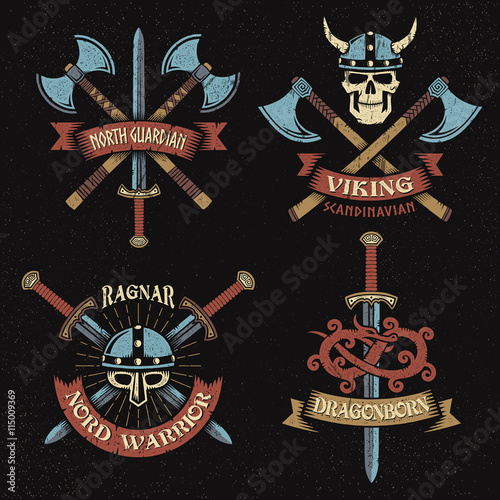 viking color logo Poster