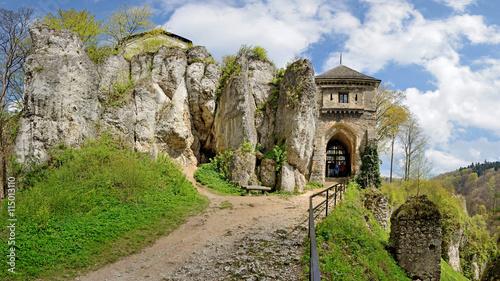 Obrazy na płótnie Canvas Zamek w Ojcowie -Stitched Panorama