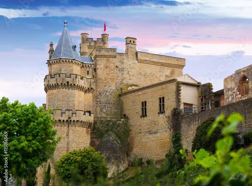 obraz PCV Castle of Olite in summer evening. Navarre
