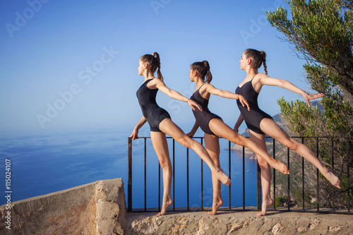 gymnastic or ballet dance pose Fototapeta
