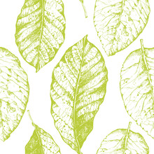 Seamless With Leaves Pattern On White Background.