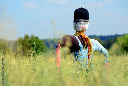 Scarecrow on a field. Canvas Print
