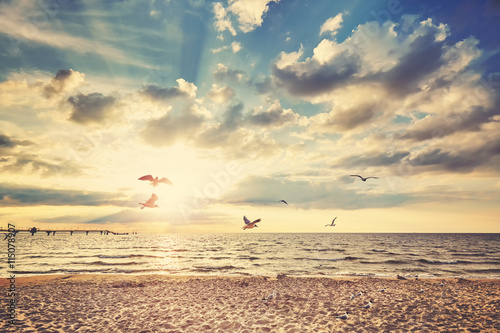 Fototapety, obrazy: Retro toned beach at sunset with flying birds.