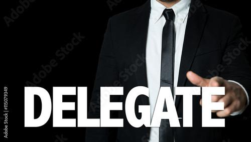 Fotografia, Obraz  Delegate