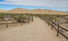 Kelso Sand Dunes In The Mojave National Preserve