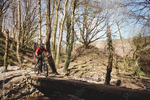 Foto op Canvas Bossen Mountain biker on footbridge in forest