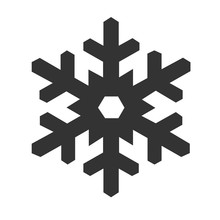 Snowflake Icon Isolated On A W...