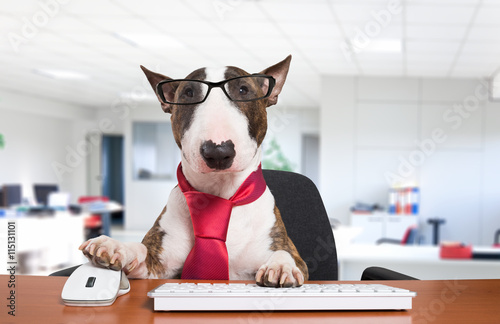 Fotografía Business dog at work