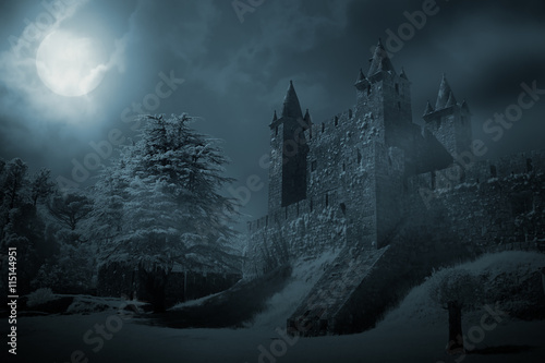 Canvas Prints Castle Medieval castle at night