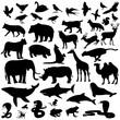 icons mammalian
