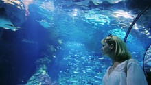 A Woman Looks At A Lot Of Fish In The Aquarium. It Should Be In The Tunnel With Glass Ceiling
