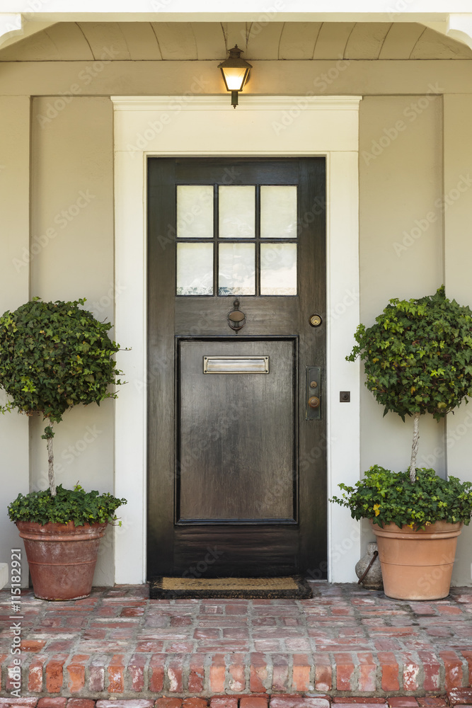 Fototapeta Front door, front view of a black front door with a mail slot and two plants