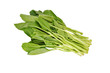 Chinese broccoli vegetables