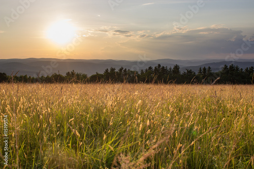 Spoed Foto op Canvas Weide, Moeras Sunset in Grassy Meadow