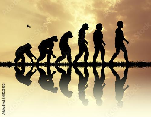 Fotografia Human evolution