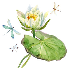 Obraz Watercolor lotus flower