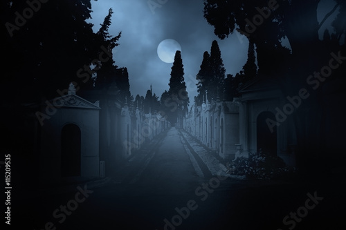 Foto op Canvas Begraafplaats Cemetery street at night