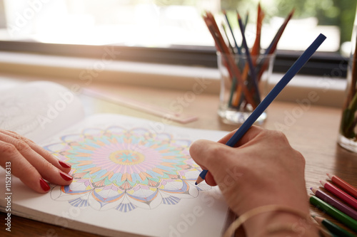 Human hands drawing in adult coloring book
