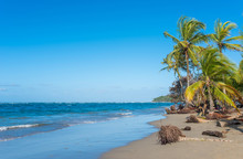 Paradise Wild Beach Of Manzani...
