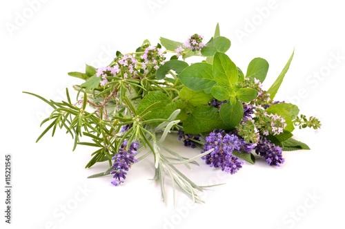 Herbs from garden.