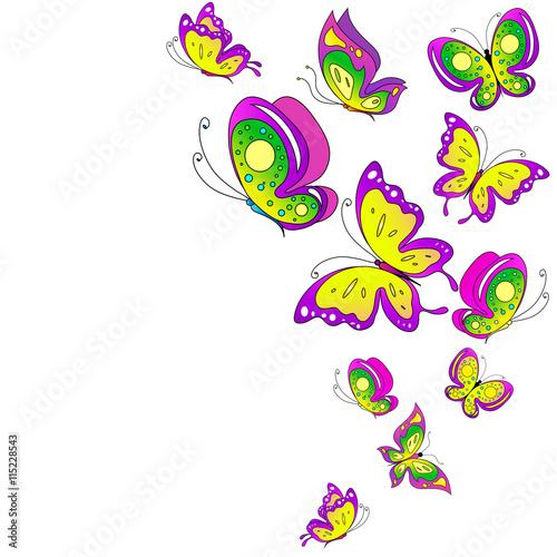 Poster Vogels, bijen butterflies design