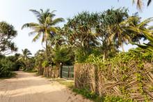 Beautiful Landscape, Tropical ...