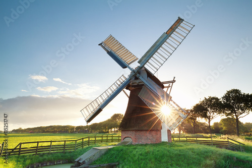 fototapeta na lodówkę morning summer sunshine behind Dutch windmill